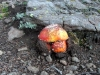 boulder-pack-trip-064