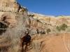 pleasant-creek-half-day-ride-spring