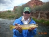 Beautiful Brown Trout on the Freemont River