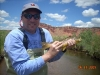 Trout on the Freemont River