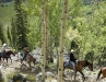 Horseback Riding through Aspens on Boulder Mt.